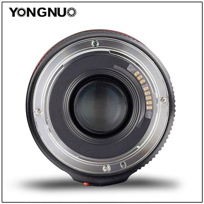 Yongnuo 50 mm F1.8 II (1)