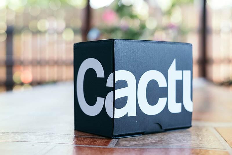 Cactus V6II (3)