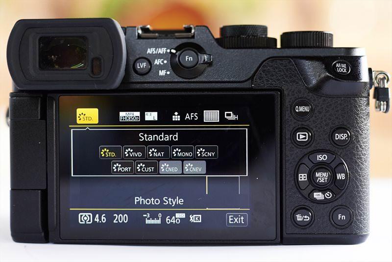 Panasonic GX8 (11)