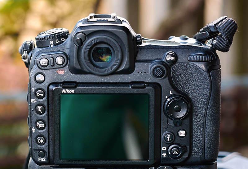 Nikon D500 (14)