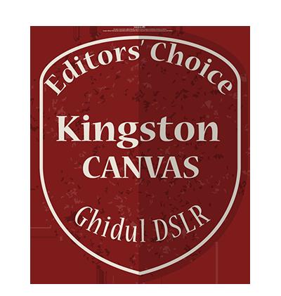 editors' choice kingston canvas