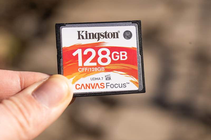 Kingston Canvas Focus (8)