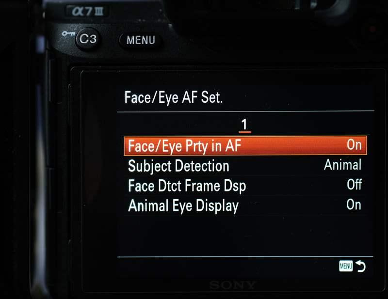 Sony A7III Firmware 3 (3)