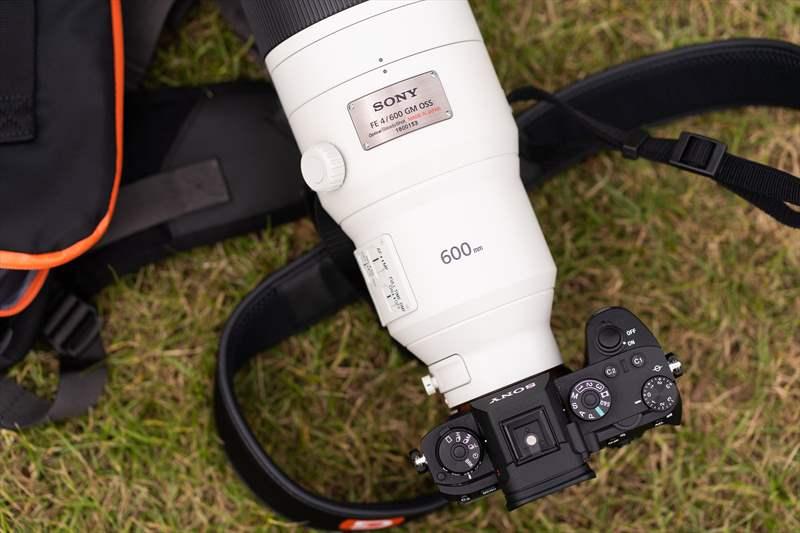 Sony 600 mm F4 G-Master (15)