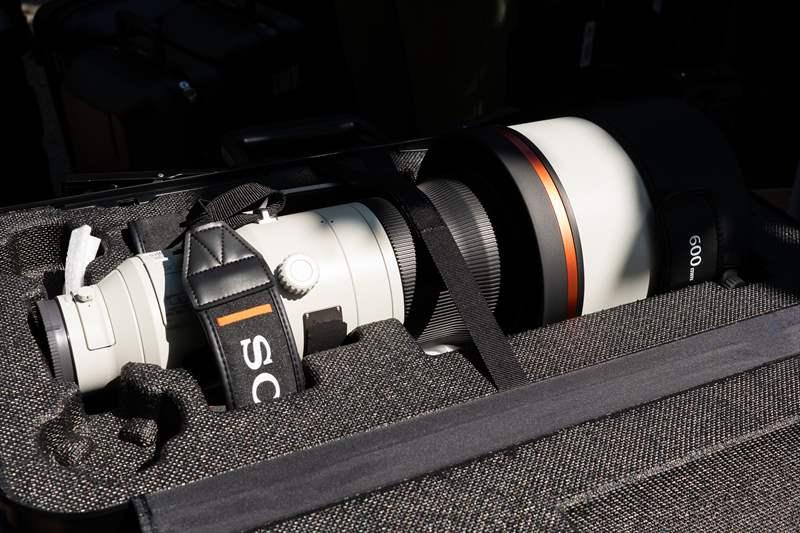 Sony 600 mm F4 G-Master (19)