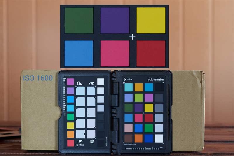 DSC00472 - ISO 1600 - 100%