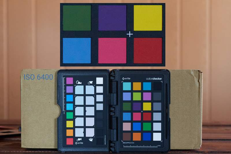 DSC00472 - ISO 6400 - 100%