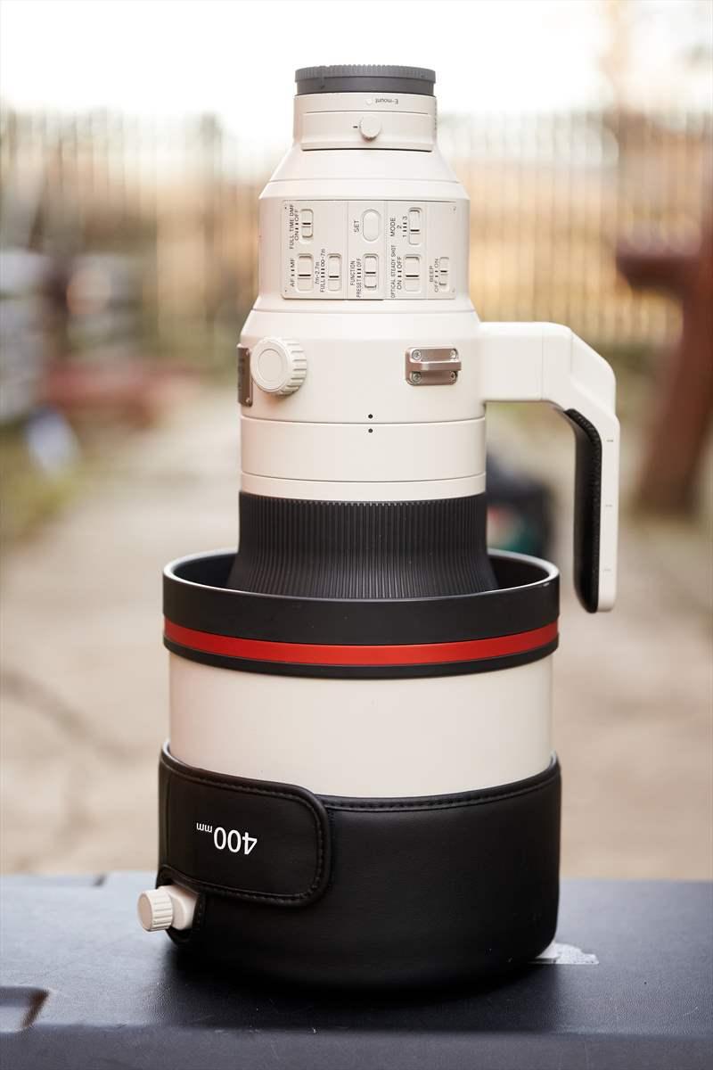 Sony A9II - Sony 400 mm F2.8 G-Master (11)