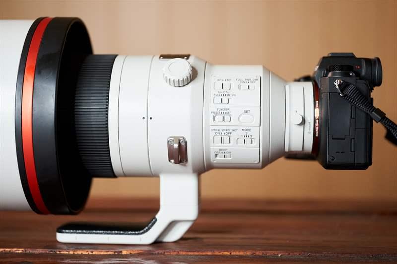 Sony A9II - Sony 400 mm F2.8 G-Master (14)