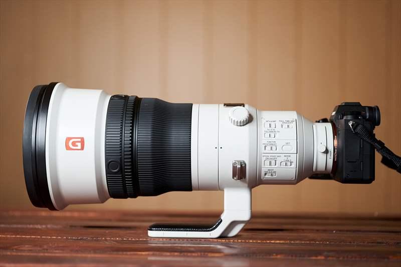 Sony A9II - Sony 400 mm F2.8 G-Master (15)