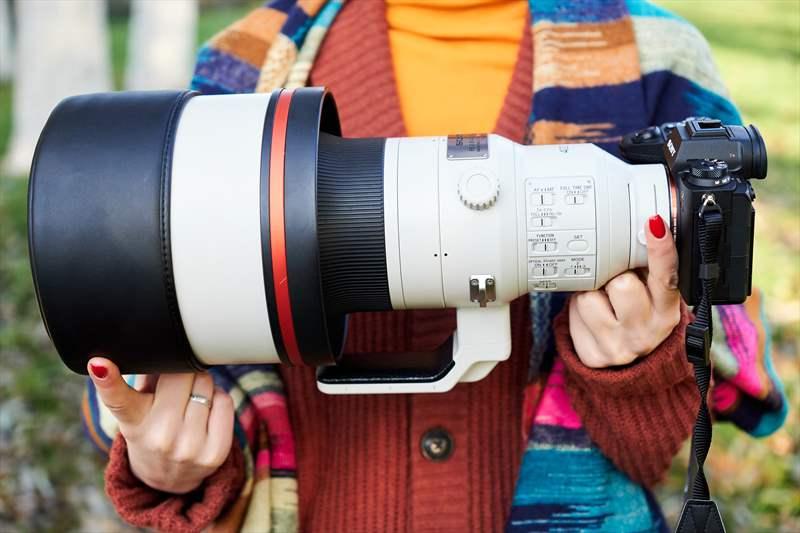 Sony A9II - Sony 400 mm F2.8 G-Master (18)