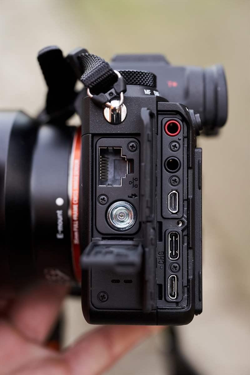Sony A9II - Sony 400 mm F2.8 G-Master (4)