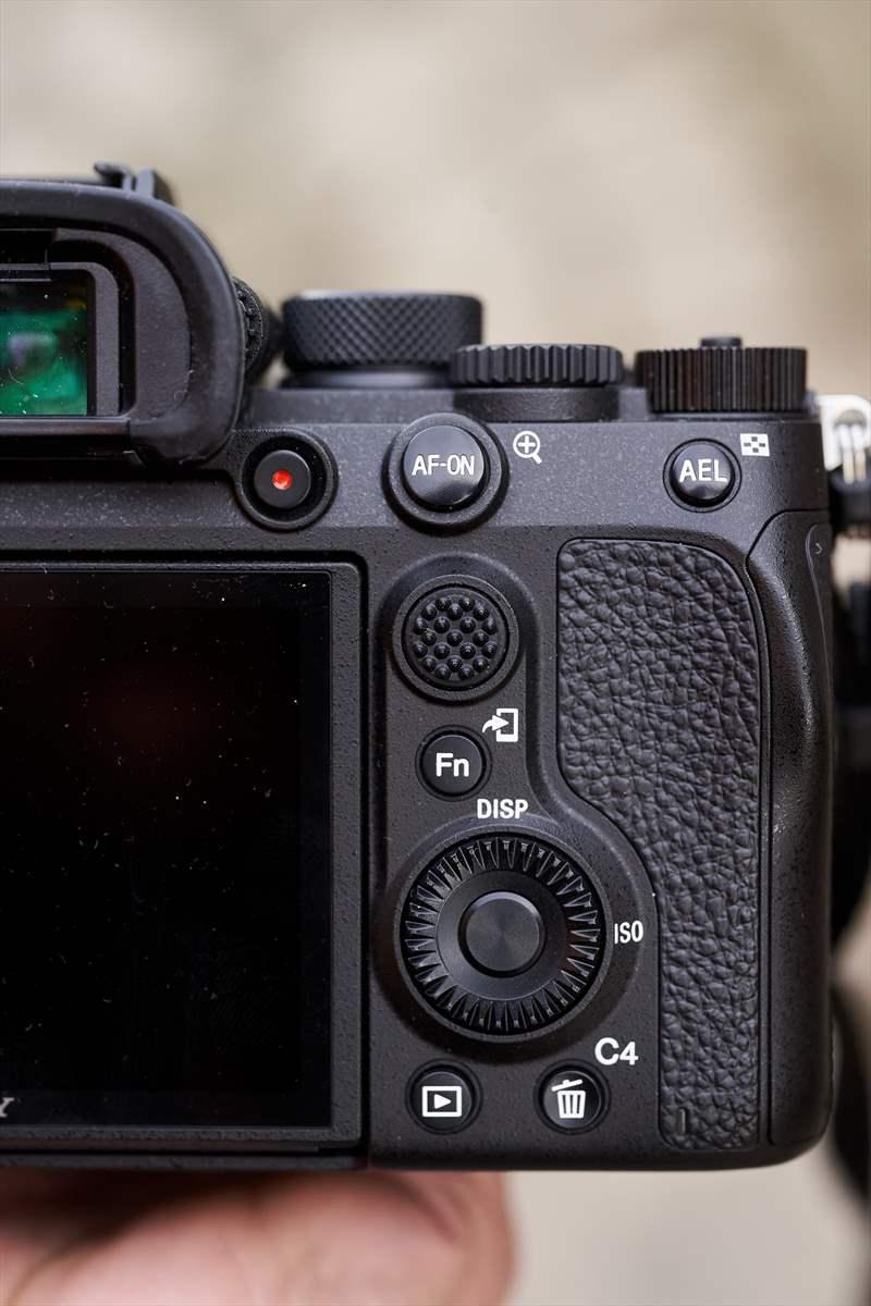 Sony A9II - Sony 400 mm F2.8 G-Master (5)